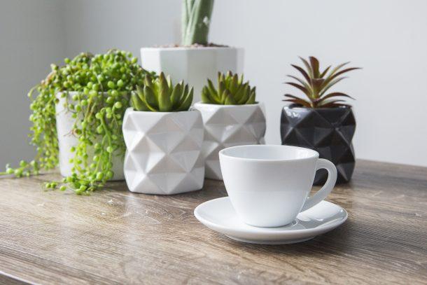 theme_home_three_plants_tea